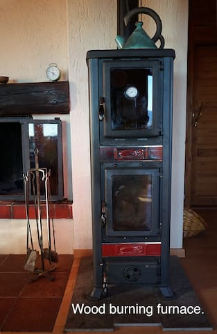 Furnace in Living Room