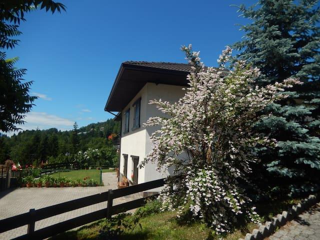 Casetta in Trentino con giardino recintato - Sant'Orsola - Wohnung