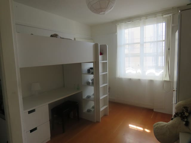Furnitured room with access to the appartment