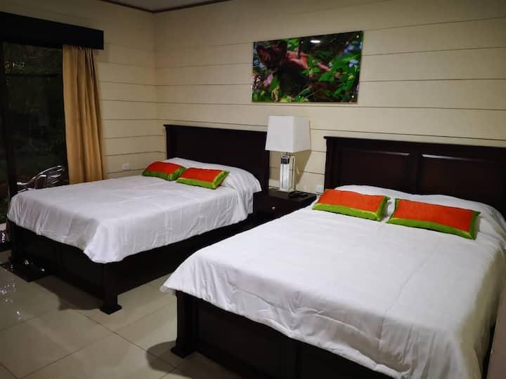 Puma Room - Hotel Calathea(4 Personas)