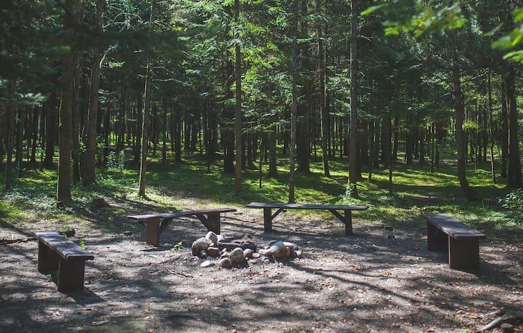 Terrain de camping #1 - Saint-Gabriel-de-Valcartier - Other