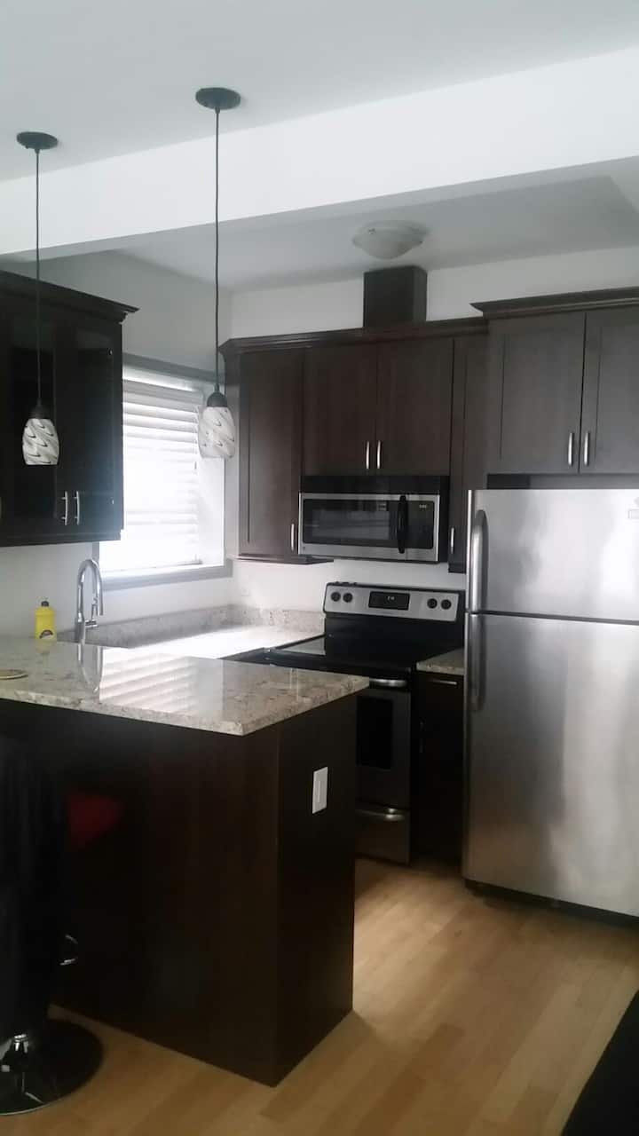 Downtown Ottawa, Byward Market 1-Bedroom Apt  (S2)