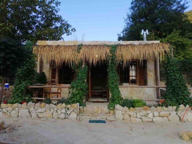 Dreamwood Cabin, the perfect getaway.