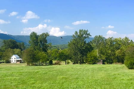 Mountainfarms' Farmhouse -pet friendly, near Chatt
