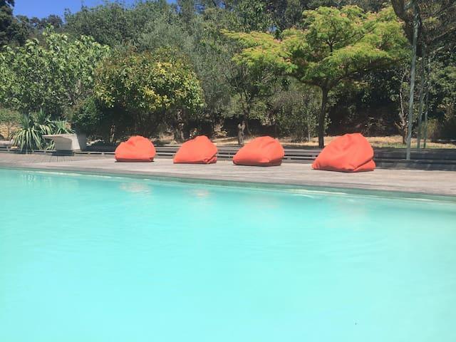 Provence, olive trees, Big villa,  pool 15x4 - Cornillon-Confoux - Casa de camp