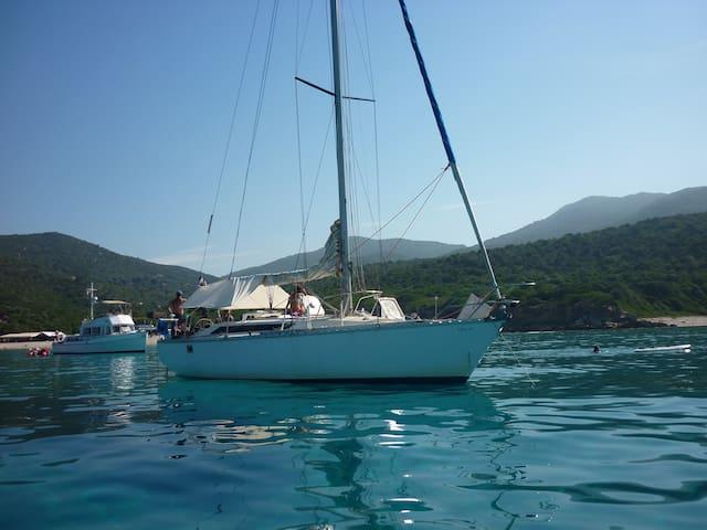 Nuit  sur  voilier au coeur d'un port du cap Corse