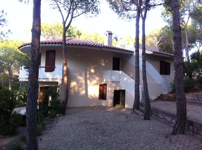 house in the woods near to the sea - Narbolia - Villa