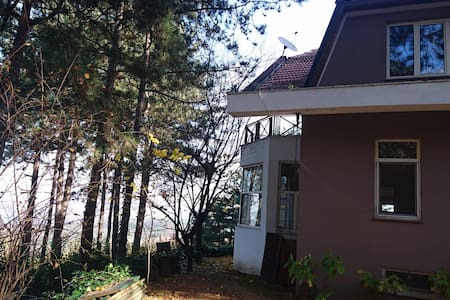 Cosy Villa in the Woods - Sapanca