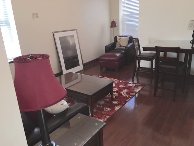 Professional Suite Apartment near BGH and BU - Binghamton - Departamento