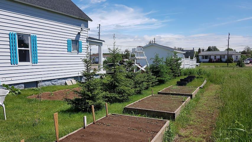 Side yard with flower/veggie garden