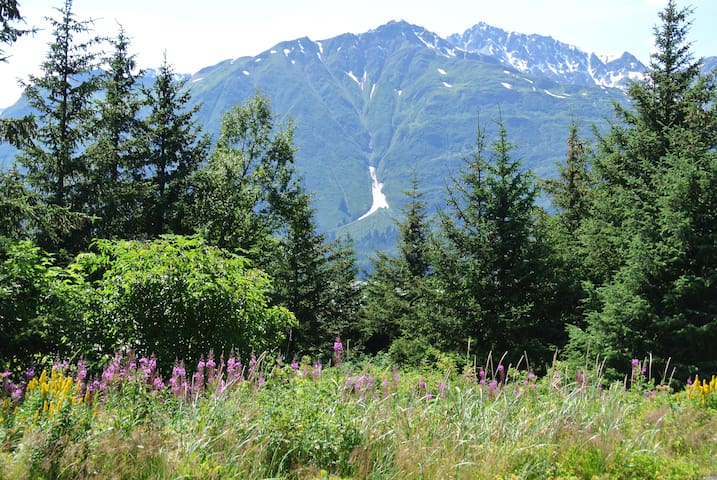 Glacier View Lodge - Haines - Bed & Breakfast