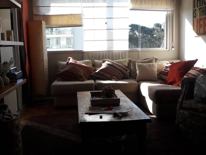 Comfortable apartment in Punta del Este.
