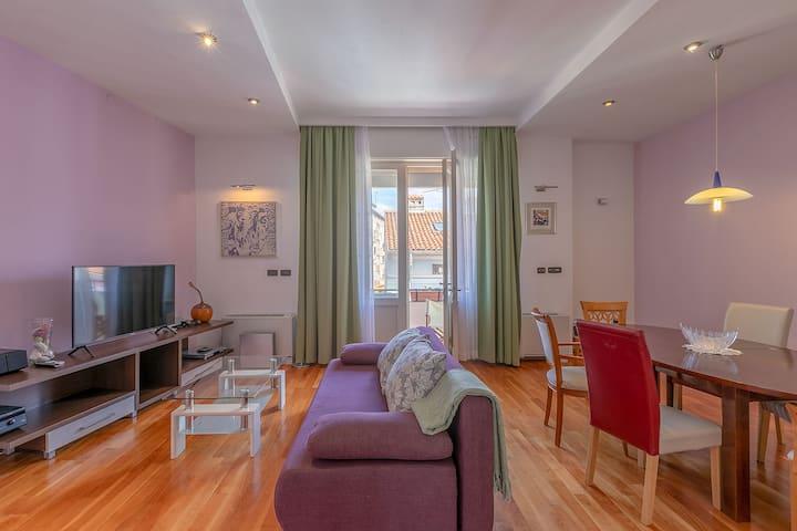 Spacious Apartment Center Pula