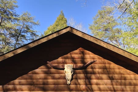 Cozy Blue Ridge Cabin w Hot Tub: Under the Hemlock