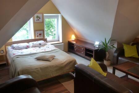 Apartament Róża Wiatrów w zabytkowej kamienicy - Sopot - Huoneisto