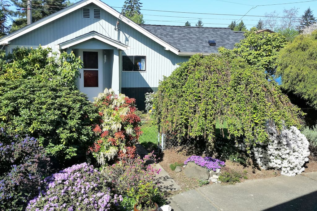 C l garden cottage west seattle guesthouses for rent for Backyard cottage seattle