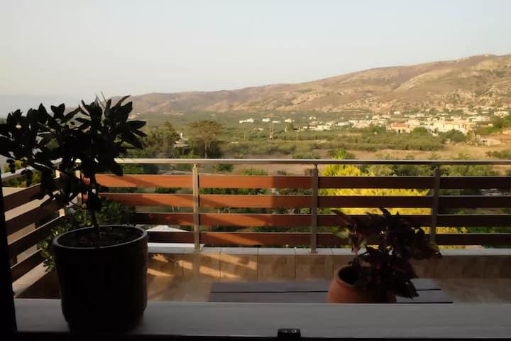 Mountain view Studio
