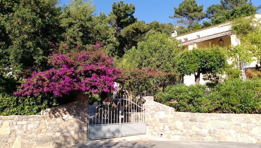 RAYOL au CALME studio rez jardin dans villa (haut)