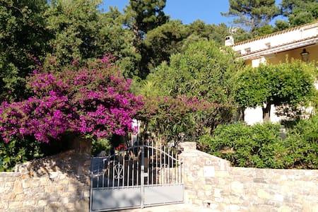 RAYOL studio (haut) CALME rez de jardin dans villa