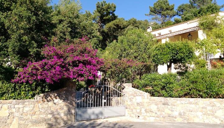 RAYOL appart. (haut) CALME rez - jardin dans villa