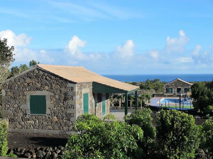 Baco's Resort -Casa Amora