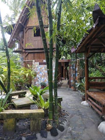 Villa Pohon Jogja, feel the nature, back to nature