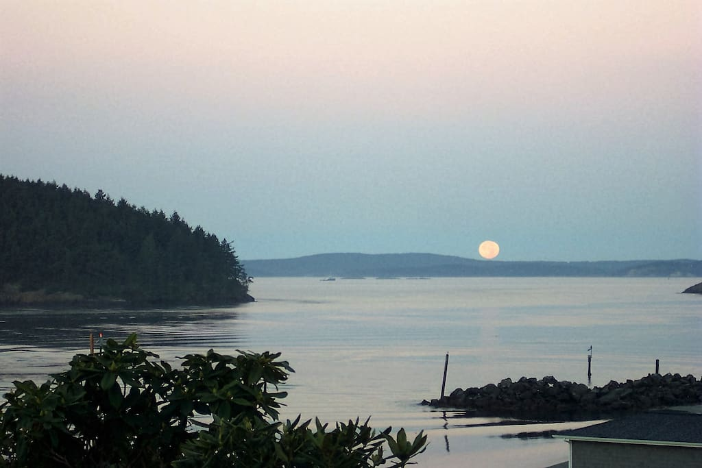 Sometimes there are surreal moon shows...the brilliant bright full moon reflecting dramatically upon the night's waters, surreal moon sets at sunrise and the dramatic giant orange harvest moon rising.