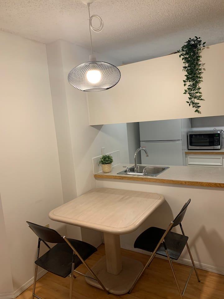 One bedroom apartment in downtown core Calgary
