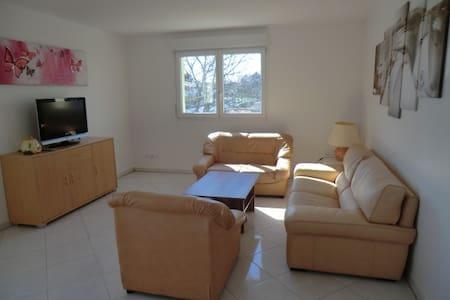 Spacieux et lumineux 4p dans propriété privée - 斯特拉斯堡 - 公寓
