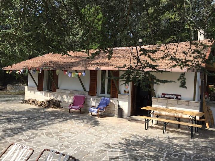 Casa nel bosco, a 200 metri dalla riva del lago