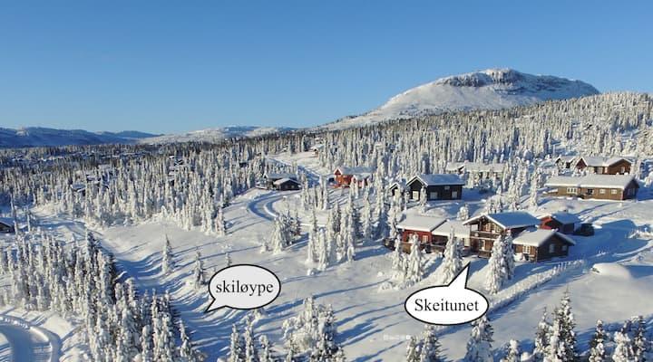 SKEITUNET,  At ski des.Skeikampen for 18 people