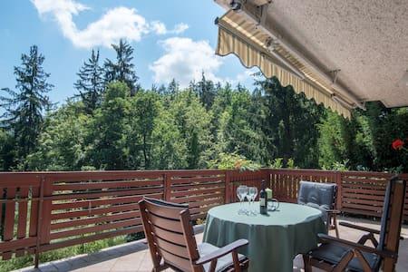 Fairytale cottage near Ljubljana