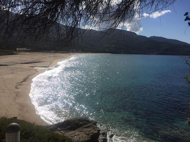 Appart T2 piscine et mer Sagone - Calcatoggio - Flat