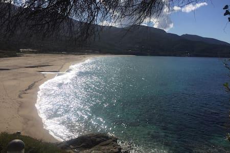 Appart T2 piscine et mer Sagone - Calcatoggio - Leilighet