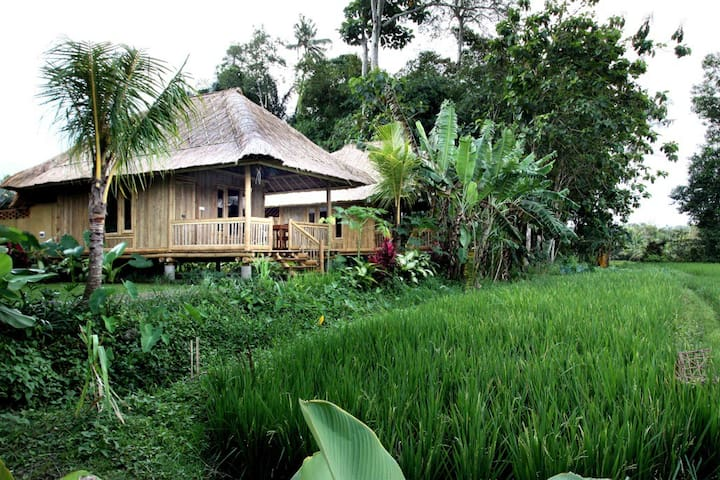Unique Bamboo House with rice view - Marga - Bungalow