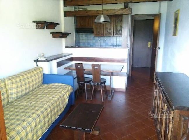 Affitto appartamento 6 posti letto alta stagione