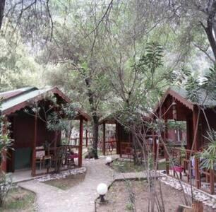 Antalya Çıralı'da bungalov - Çıralı