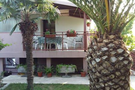 Daca - Čeluga - Apartment
