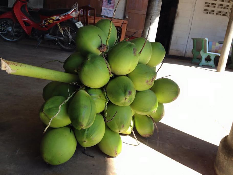 Young coconut that you will cut and taste by yourself