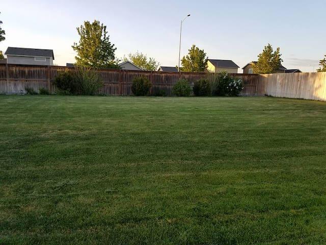 Large, fully fenced, back-yard.
