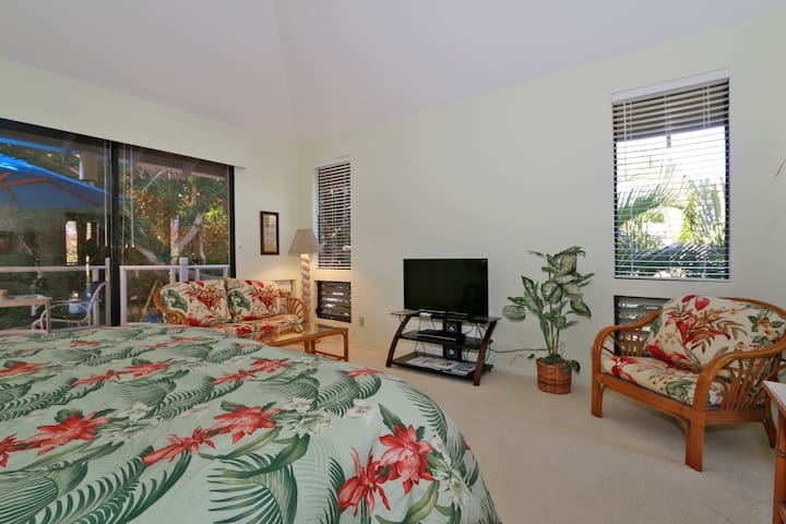 "40"" flat screen TV, DVD player, chair with Hawaiian floral print. Notice cathedral ceiling."