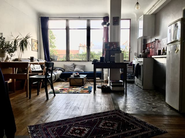 Paris Belleville: 2 rooms 40m2
