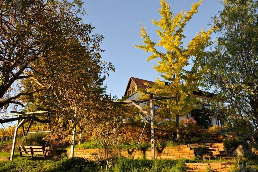 Haus und Garten   House and garden
