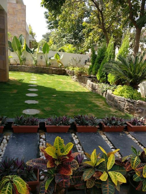 Garden front view