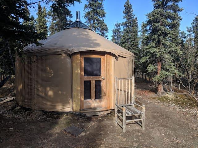 Spruce Yurt