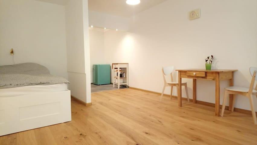 Wohnung in Zentrumnähe