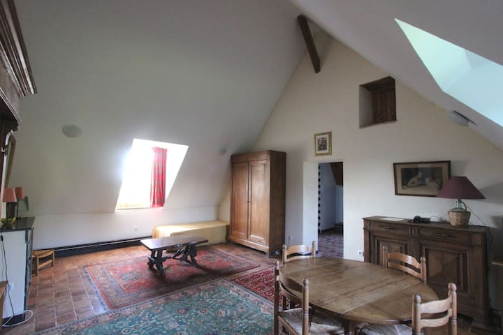 château d'Island Avallon Vézelay - Island - Apartment