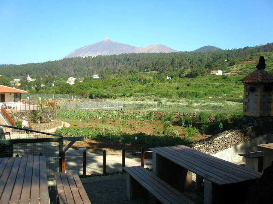 Panorámica del Teide desde Eco House Chinyero