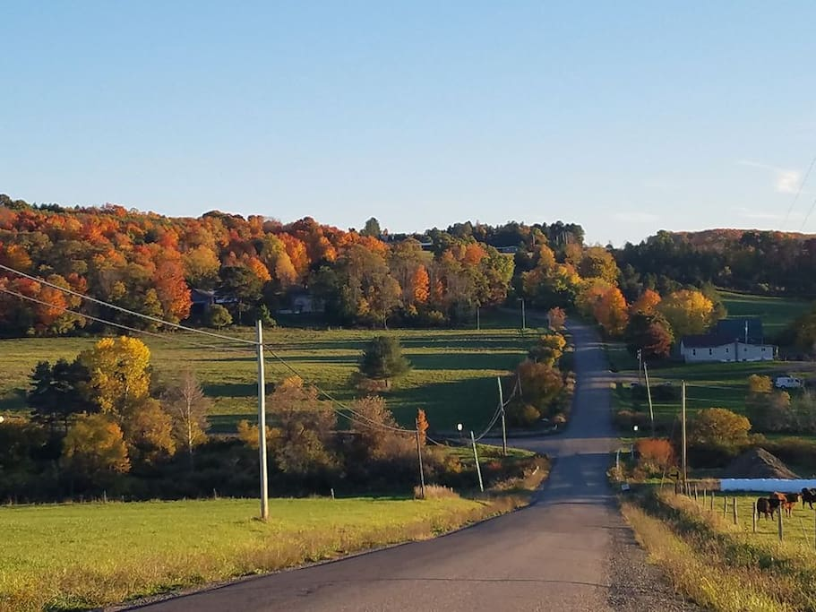 Fall in the Finger Lakes is gorgeous!