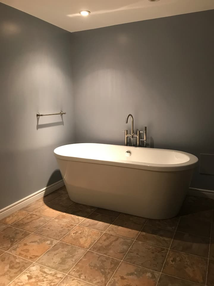 1 bedroom and bathroom private basement suite
